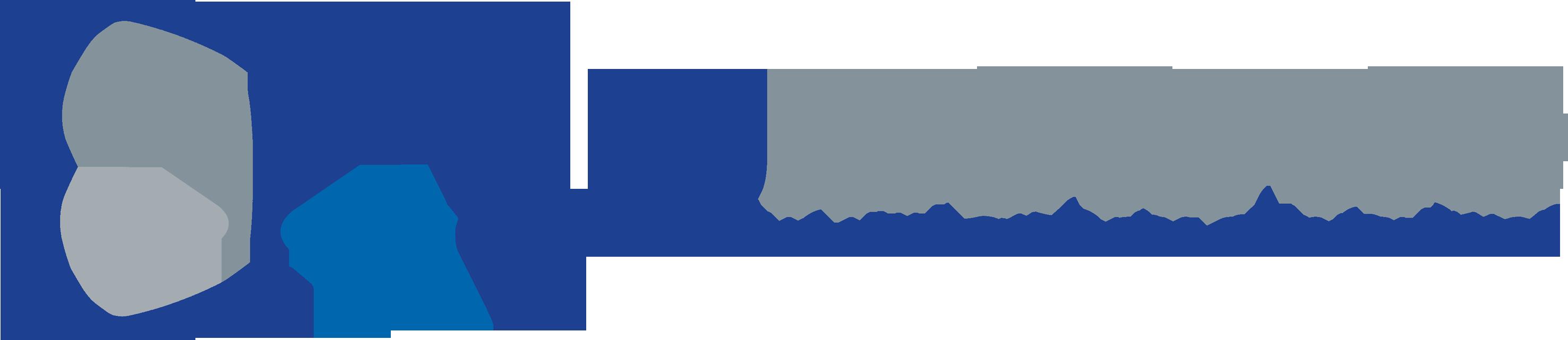 logo-blumorpho